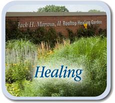 healing-btn
