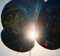 balloons with sun slide show pic